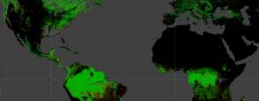 Mapa interactivo de la deforestación del Amazonas